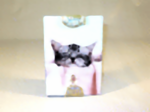Pet Frame (Cat and/or Dog)