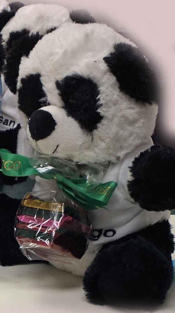 Panda SD Chocolate