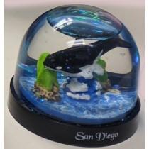 San Diego Globe Woody Waves Plastic