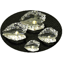 Crystal Oysters with Pearl